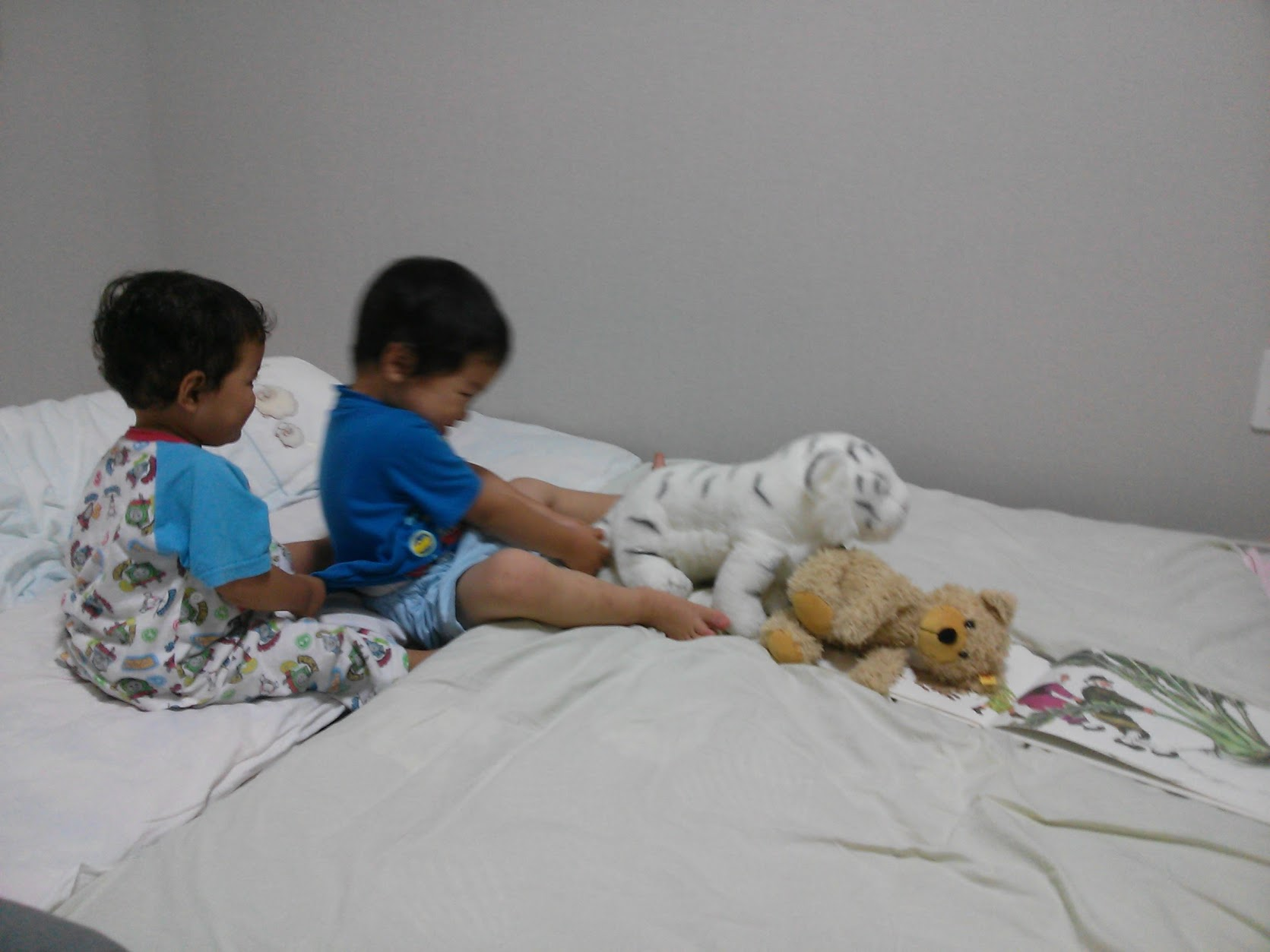 2歳の誕生日プレゼントにおすすめの絵本5選(絵本1000冊保有&乳幼児教室講師がオススメする子どもの心と脳が育つ絵本)