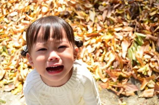 【2020年3月限定】魔のイヤイヤ期に これ以上振り回されたくない! 2歳児パパママのための子育て講座